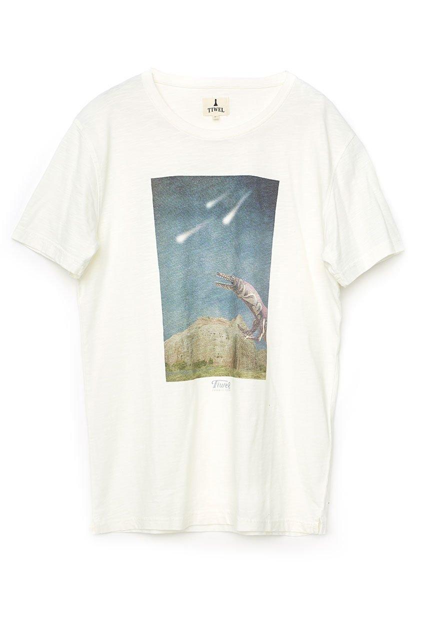 Meteorite Tshirt Tiwel Snow White